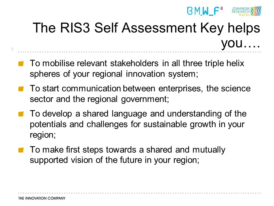 8 The RIS3 Self Assessment Key helps you….