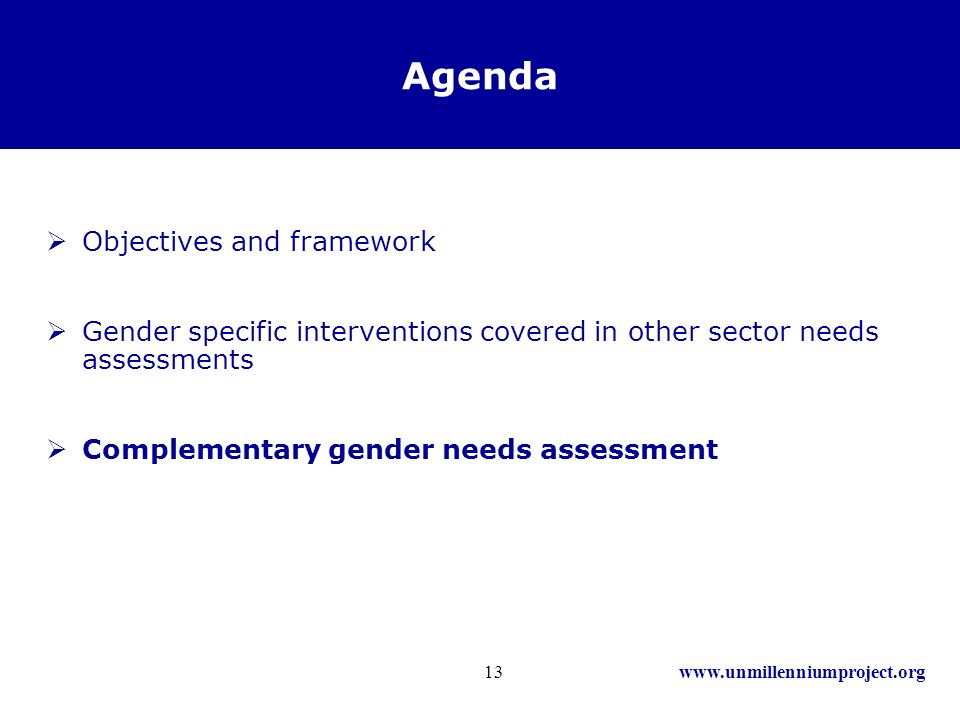 www.unmillenniumproject.org13 Agenda Objectives and framework Gender specific interventions covered in other sector needs assessments Complementary gender needs assessment