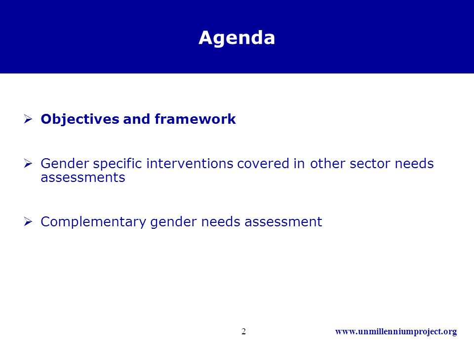 www.unmillenniumproject.org2 Agenda Objectives and framework Gender specific interventions covered in other sector needs assessments Complementary gender needs assessment