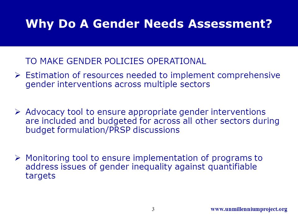 www.unmillenniumproject.org3 Why Do A Gender Needs Assessment.
