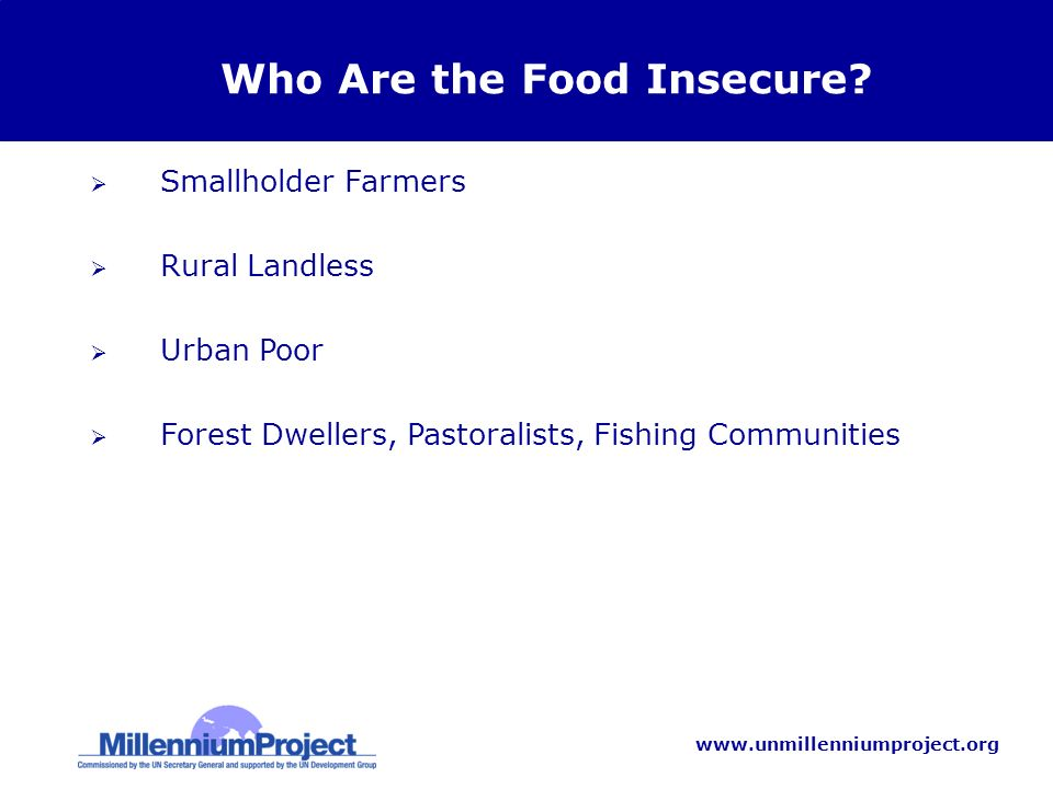 www.unmillenniumproject.org Who Are the Food Insecure? Smallholder Farmers Rural Landless Urban Poor Forest Dwellers, Pastoralists, Fishing Communitie