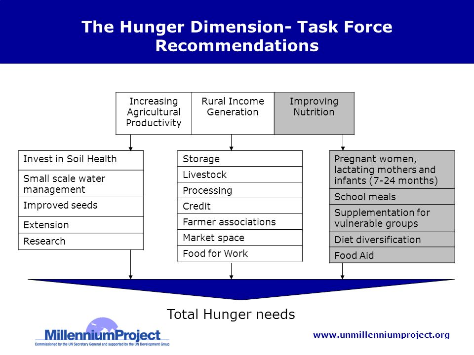 www.unmillenniumproject.org Total Hunger needs Increasing Agricultural Productivity Rural Income Generation Improving Nutrition The Hunger Dimension- Task Force Recommendations Invest in Soil Health Small scale water management Improved seeds Extension Research Storage Livestock Processing Credit Farmer associations Market space Food for Work Pregnant women, lactating mothers and infants (7-24 months) School meals Supplementation for vulnerable groups Diet diversification Food Aid