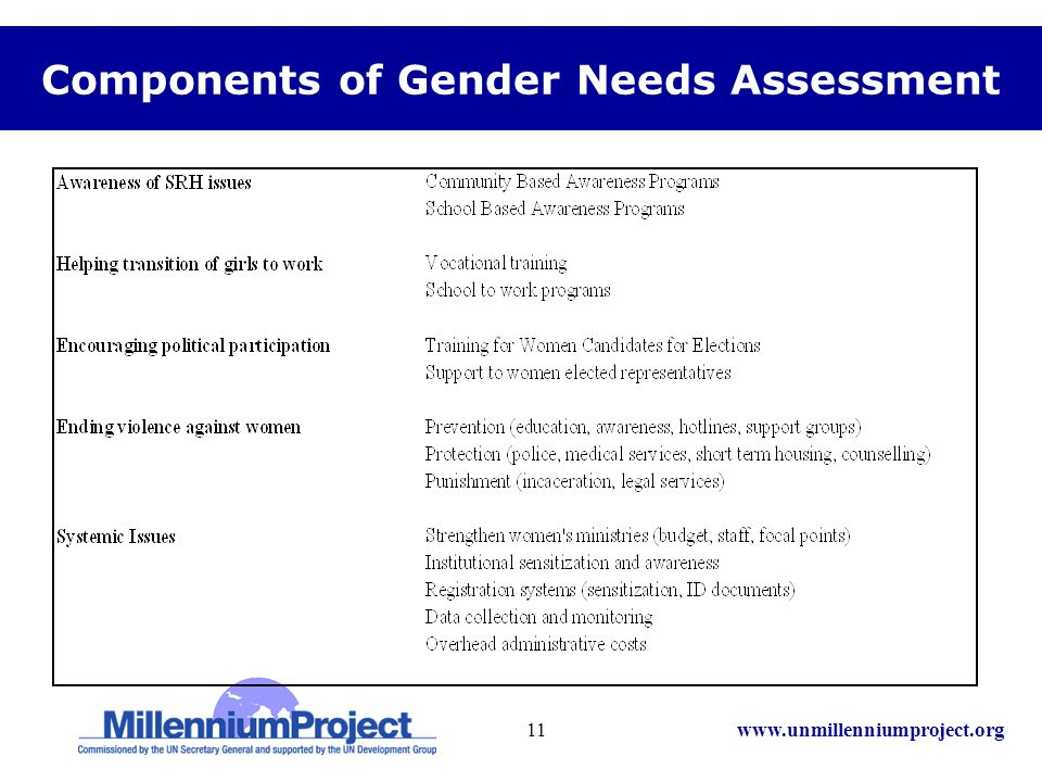 www.unmillenniumproject.org11 Components of Gender Needs Assessment