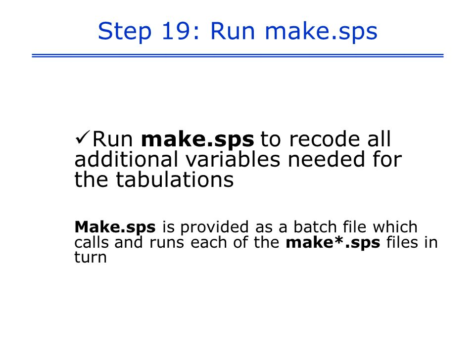 Step 19: Run make.sps Run make.sps to recode all additional variables needed for the tabulations Make.sps is provided as a batch file which calls and runs each of the make*.sps files in turn