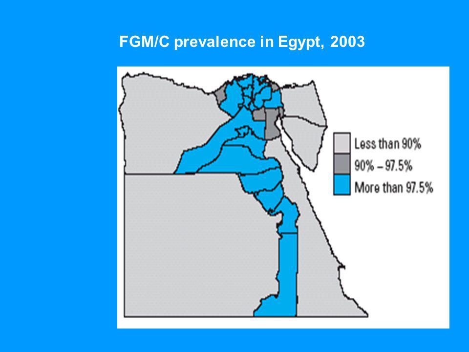FGM/C prevalence in Egypt, 2003