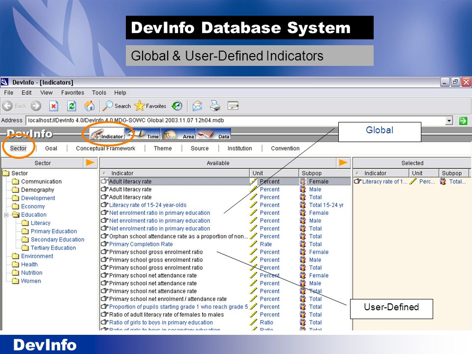 DevInfo DevInfo Database System Global & User-Defined Indicators Global User-Defined