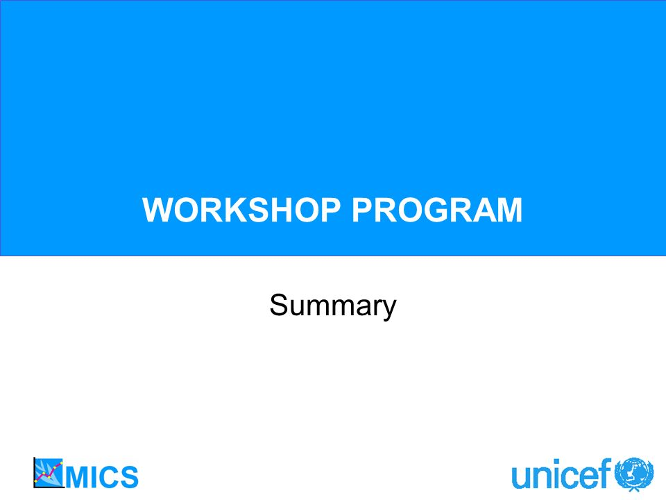 WORKSHOP PROGRAM Summary