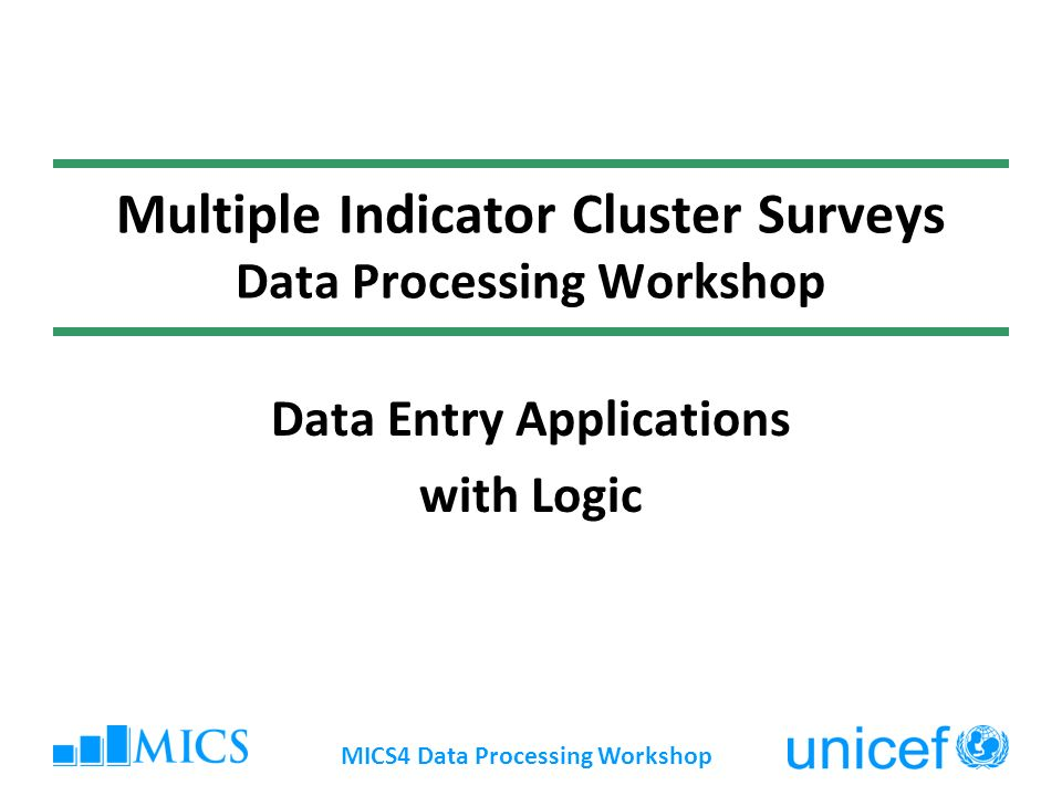 Testing your Application Click once on the execute button on toolbar ( ), or press to run Use NoData.dat as your datafile Enter a case (i.e., a questionnaire) MICS4 Data Processing Workshop