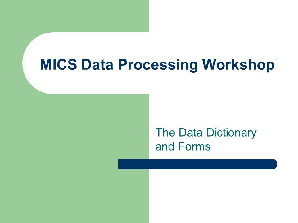 MICS Data Processing Workshop The Data Dictionary and Forms