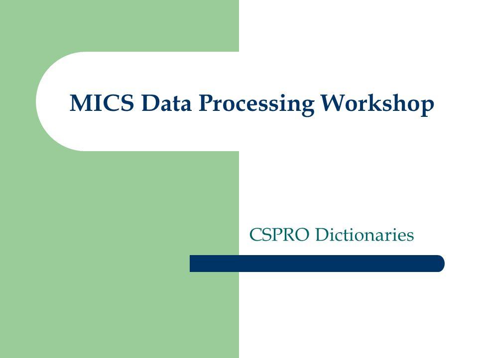 MICS Data Processing Workshop CSPRO Dictionaries