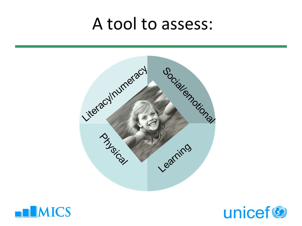 A tool to assess: Literacy/numeracy Social/emotional Learning