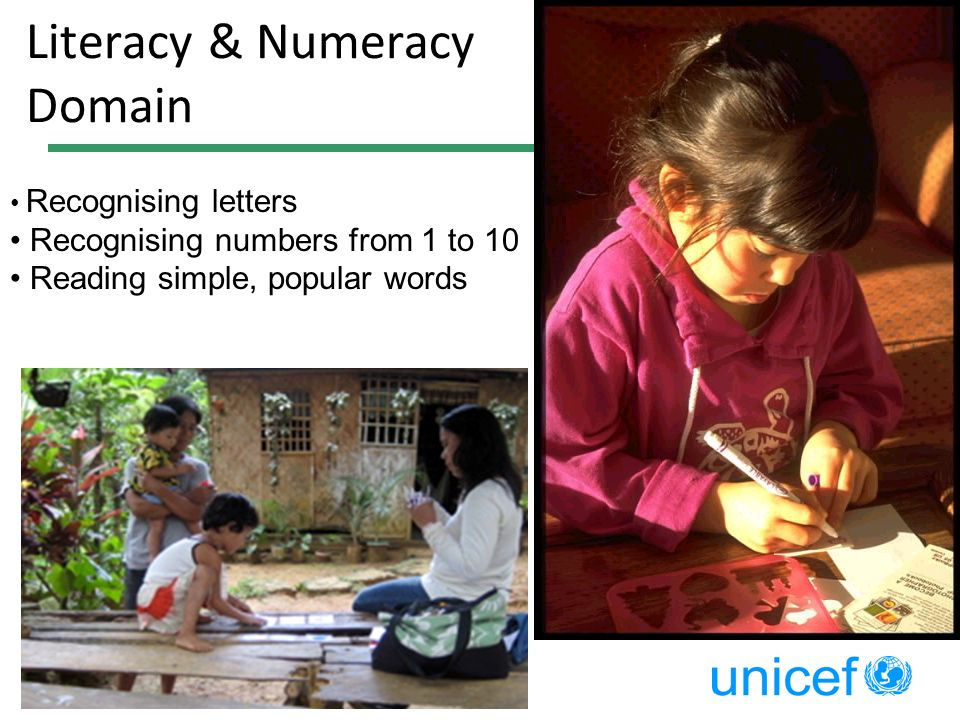 Literacy & Numeracy Domain Recognising letters Recognising numbers from 1 to 10 Reading simple, popular words