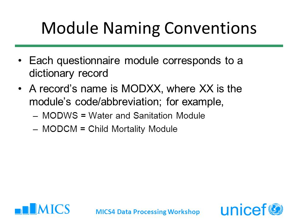 Module Naming Conventions Each questionnaire module corresponds to a dictionary record A records name is MODXX, where XX is the modules code/abbreviation; for example, –MODWS = Water and Sanitation Module –MODCM = Child Mortality Module MICS4 Data Processing Workshop