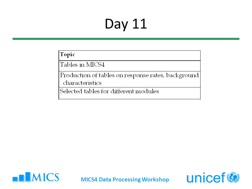 Day 11 MICS4 Data Processing Workshop