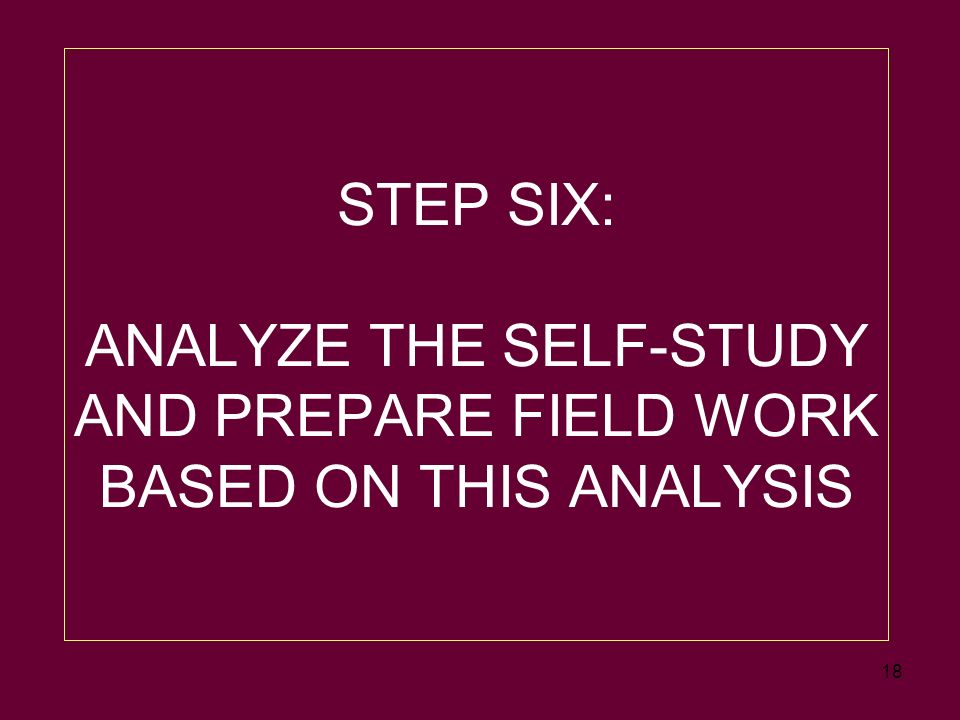 18 STEP SIX: ANALYZE THE SELF-STUDY AND PREPARE FIELD WORK BASED ON THIS ANALYSIS