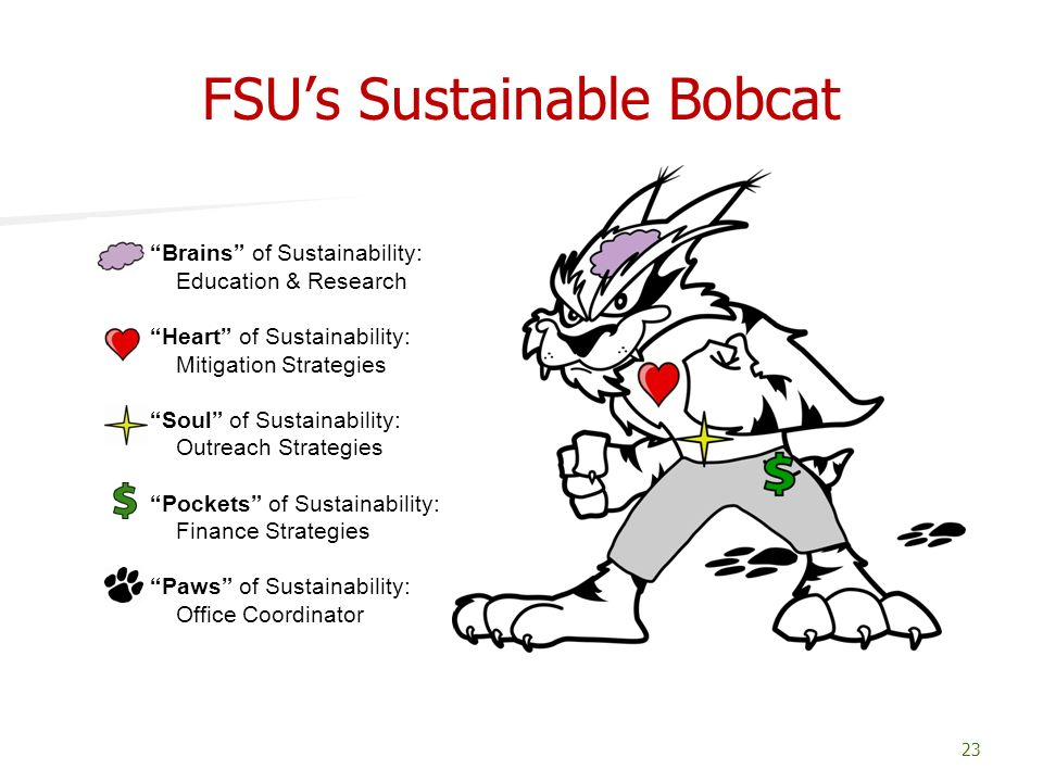 FSUs Sustainable Bobcat 23 Brains of Sustainability: Education & Research Heart of Sustainability: Mitigation Strategies Soul of Sustainability: Outre