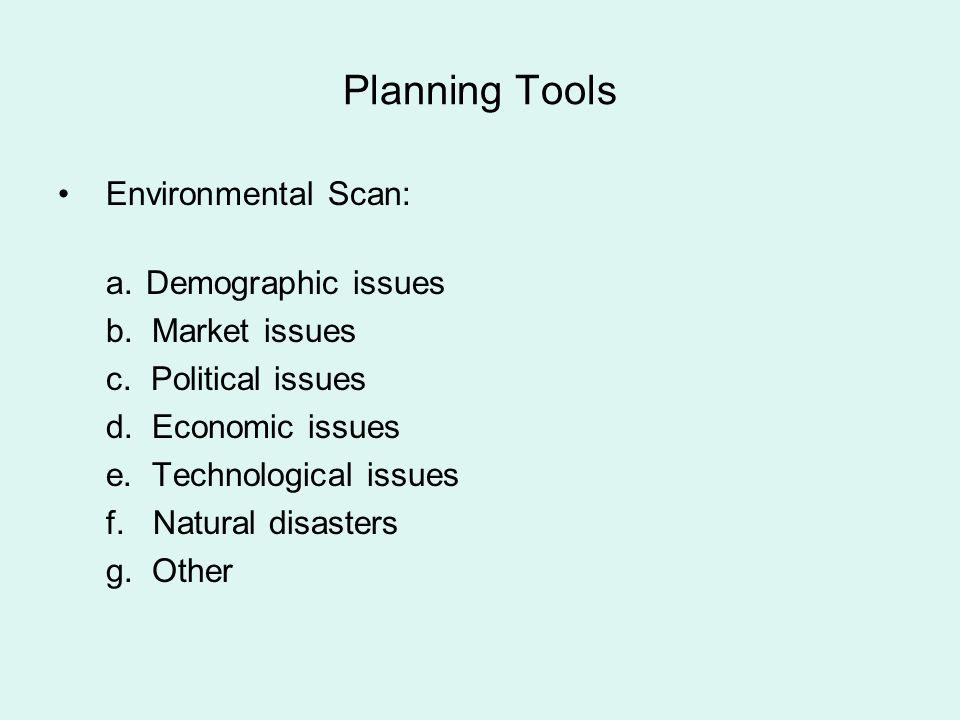 Planning Tools Environmental Scan: a.Demographic issues b. Market issues c. Political issues d. Economic issues e. Technological issues f. Natural dis