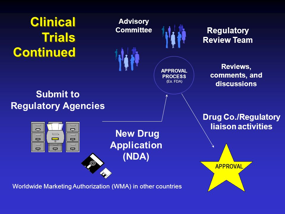 Clinical Trials Continued APPROVAL PROCESS (Ex. FDA) Reviews, comments, and discussions Drug Co./Regulatory liaison activities APPROVAL Submit to Regu