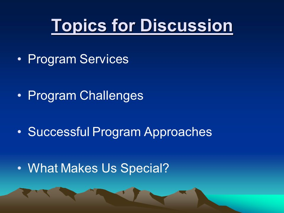 Topics for Discussion Program Services Program Challenges Successful Program Approaches What Makes Us Special?