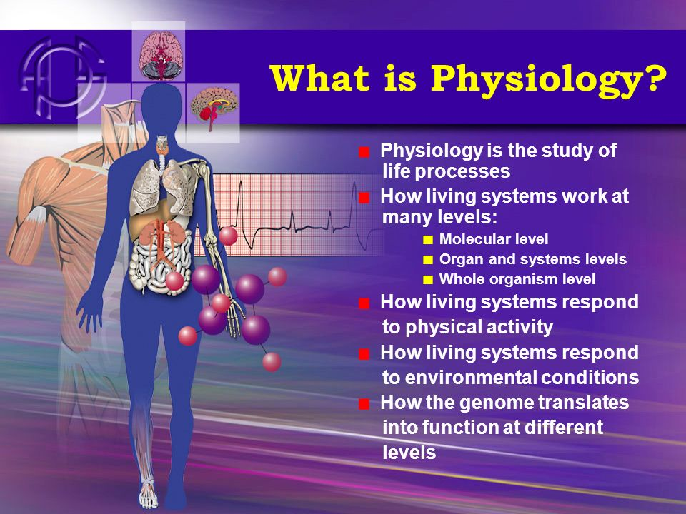 What is Physiology? Physiology is the study of life processes How living systems work at many levels: Molecular level Organ and systems levels Whole o