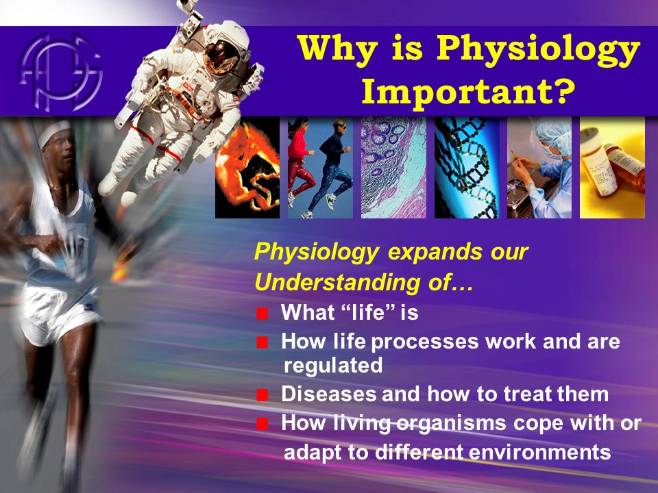 What Do Physiologists Study.