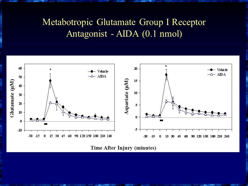 Metabotropic Glutamate Group I Receptor Antagonist - AIDA (0.1 nmol) Glutamate (μM) Aspartate (μM) Time After Injury (minutes)