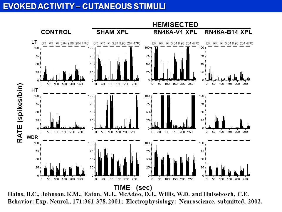 CONTROL SHAM XPL RN46A-V1 XPL RN46A-B14 XPL RATE (spikes/bin) HEMISECTED TIME (sec) LT WDR HT BR PR PI 3.84 9.96 204 47 o C EVOKED ACTIVITY – CUTANEOUS STIMULI Hains, B.C., Johnson, K.M., Eaton, M.J., McAdoo, D.J., Willis, W.D.
