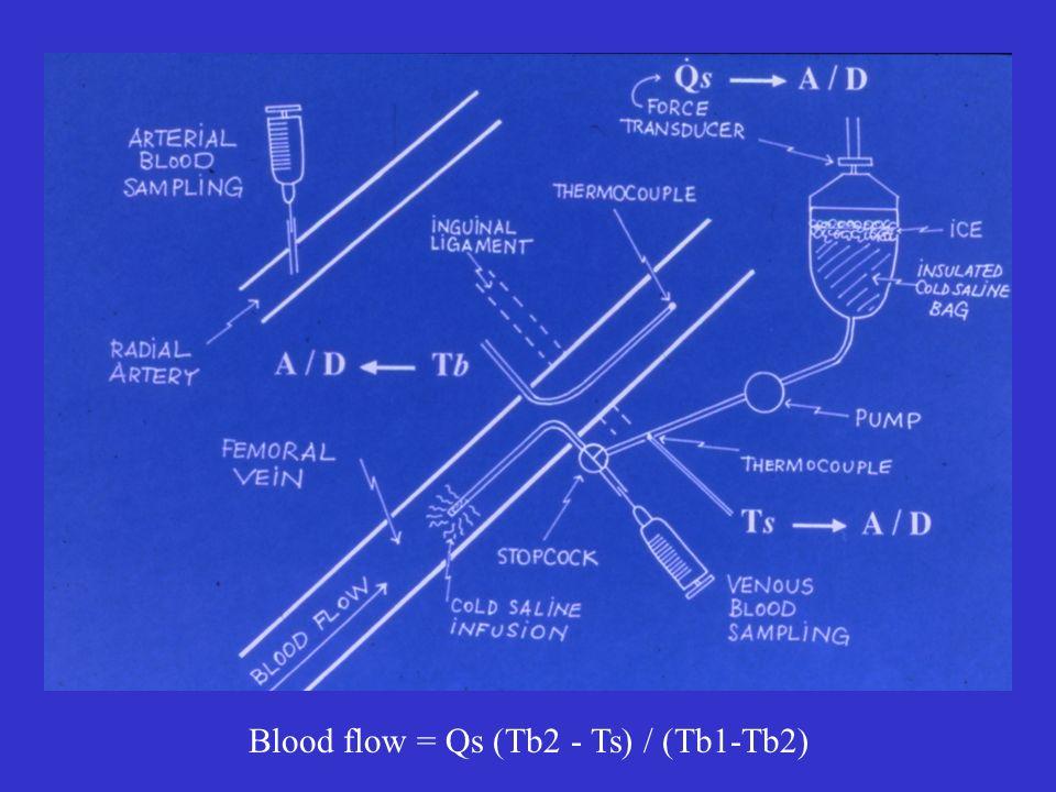 Blood flow = Qs (Tb2 - Ts) / (Tb1-Tb2)