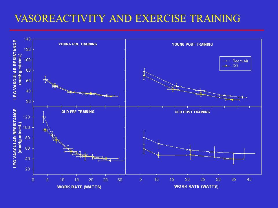 VASOREACTIVITY AND EXERCISE TRAINING