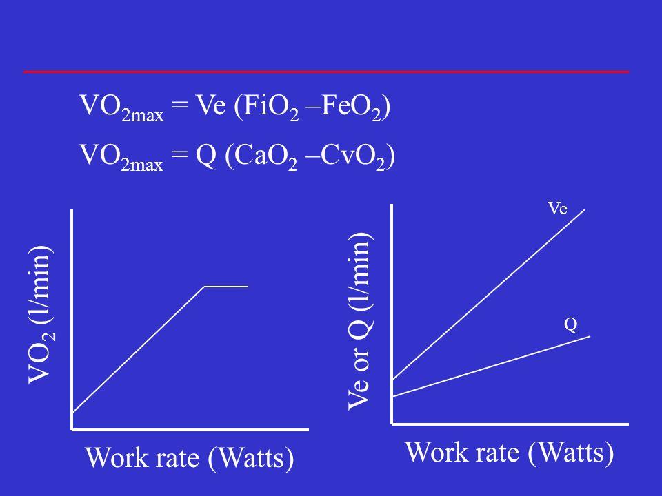 VO 2max = Q (CaO 2 –CvO 2 ) VO 2max = Ve (FiO 2 –FeO 2 ) VO 2 (l/min) Work rate (Watts) Ve or Q (l/min) Work rate (Watts) Ve Q