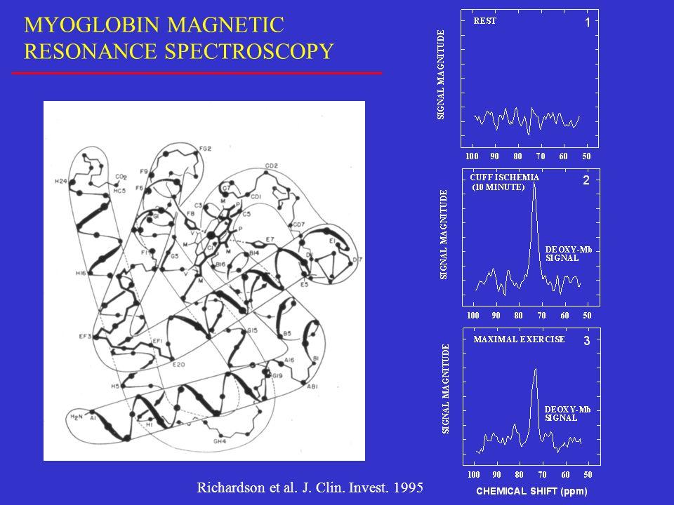 MYOGLOBIN MAGNETIC RESONANCE SPECTROSCOPY Richardson et al. J. Clin. Invest. 1995