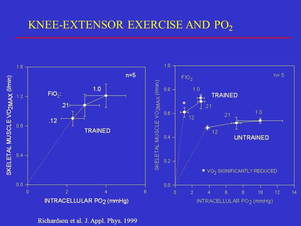KNEE-EXTENSOR EXERCISE AND PO 2 Richardson et al. J. Appl. Phys. 1999