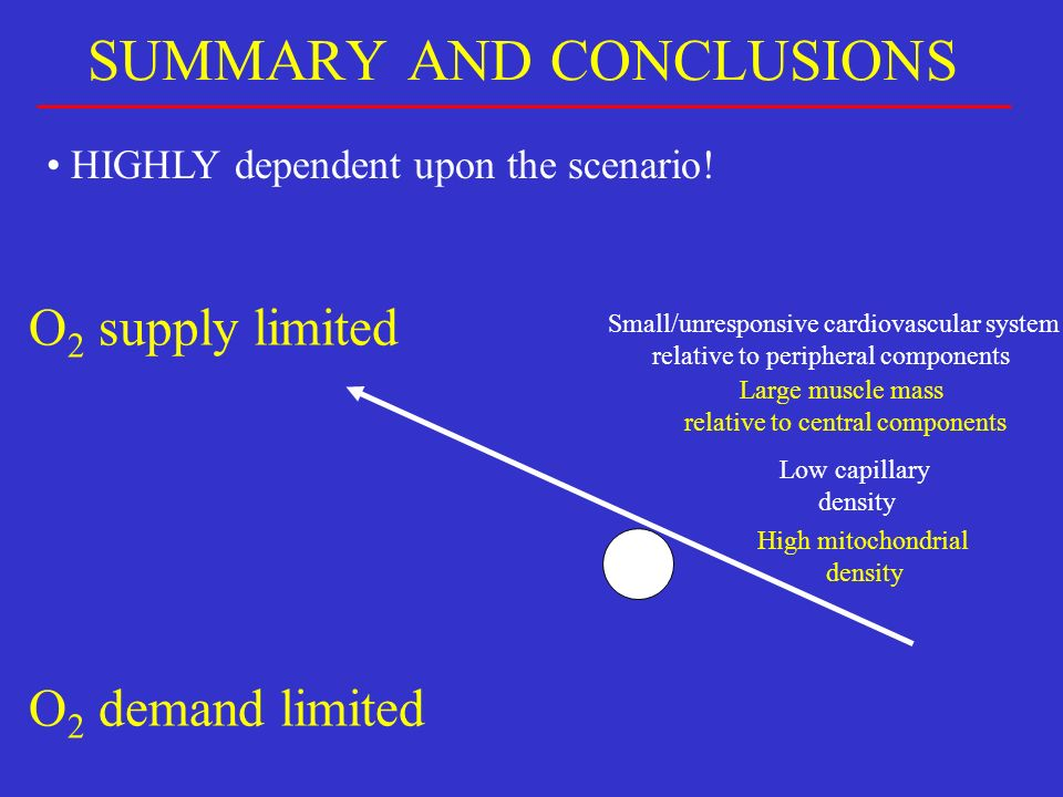 SUMMARY AND CONCLUSIONS HIGHLY dependent upon the scenario! O 2 supply limited O 2 demand limited Low capillary density High mitochondrial density Lar