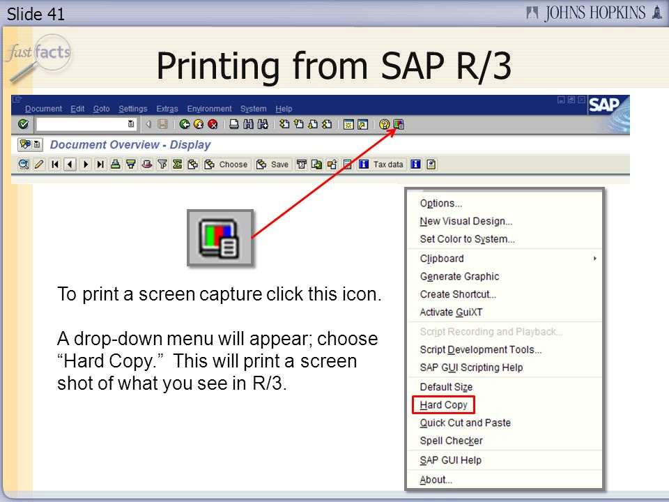 Slide 41 Printing from SAP R/3 To print a screen capture click this icon.