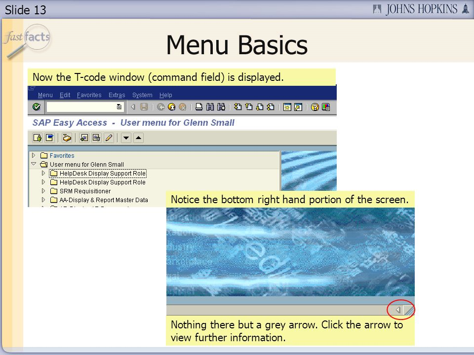 Slide 13 Menu Basics Now the T-code window (command field) is displayed.