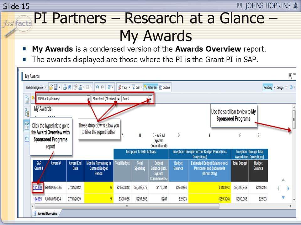 Slide 15 PI Partners – Research at a Glance – My Awards My Awards is a condensed version of the Awards Overview report.