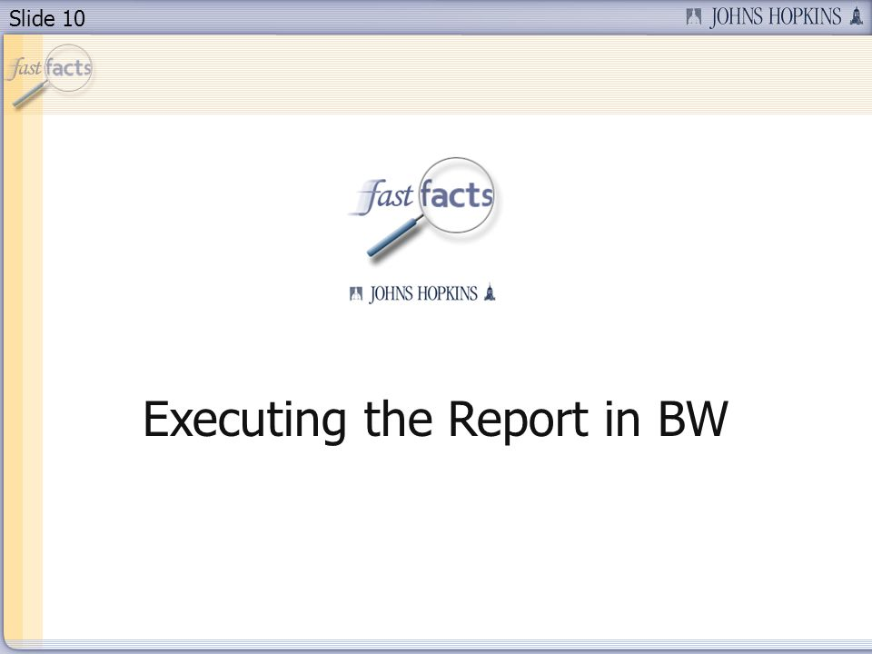 Slide 10 Executing the Report in BW