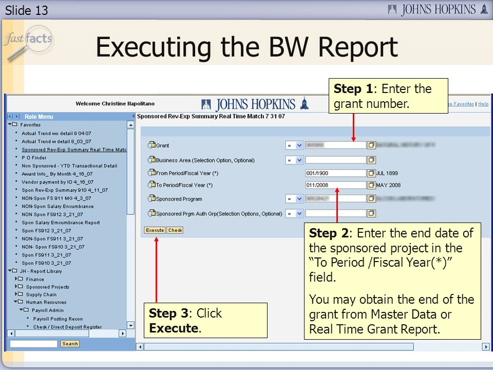 Slide 13 Executing the BW Report Step 3: Click Execute.