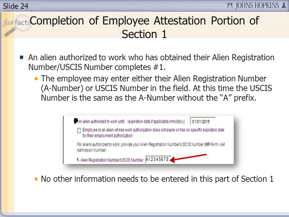 Slide 24 Completion of Employee Attestation Portion of Section 1 An alien authorized to work who has obtained their Alien Registration Number/USCIS Nu
