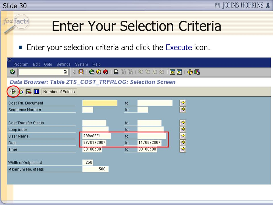 Slide 30 Enter Your Selection Criteria Enter your selection criteria and click the Execute icon.