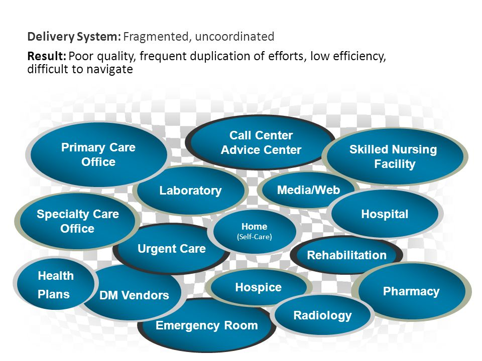 Typical U.S. health care Emergency Room DM Vendors Rehabilitation Call Center Advice Center Skilled Nursing Facility Urgent Care Pharmacy Laboratory S