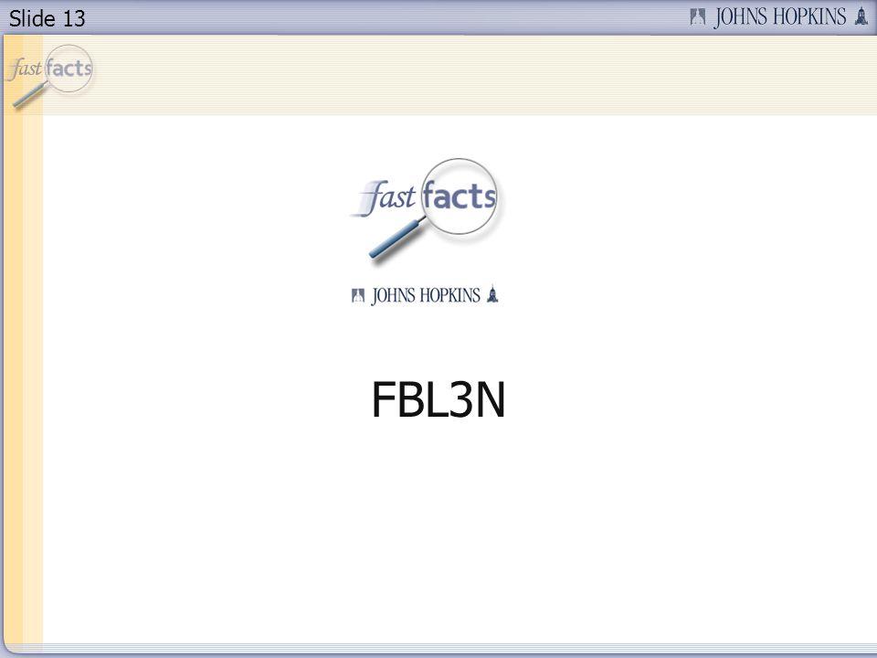 Slide 13 FBL3N