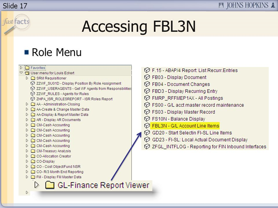 Slide 17 Accessing FBL3N Role Menu