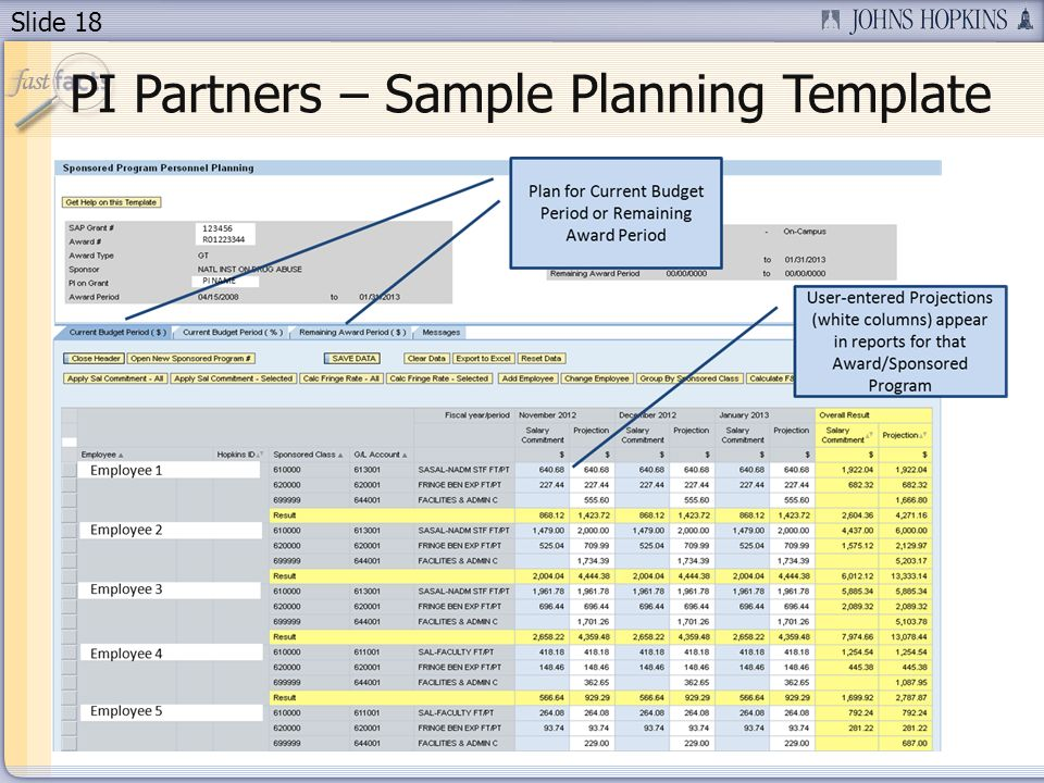 Slide 18 PI Partners – Sample Planning Template