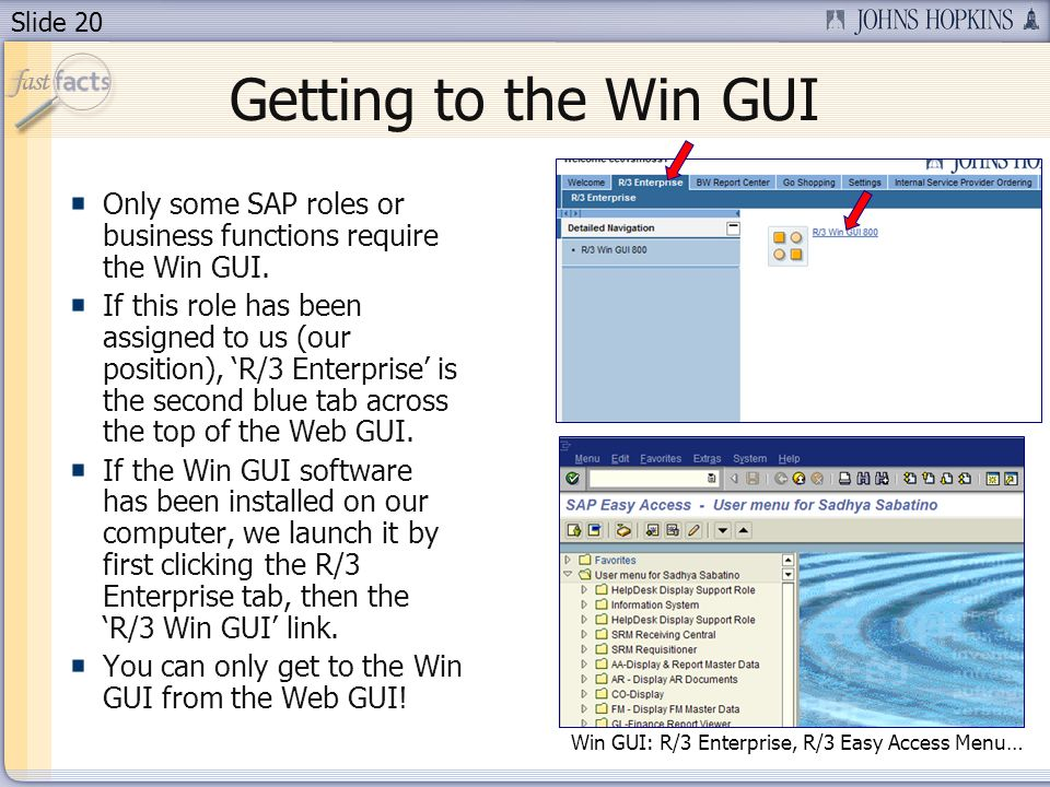 Slide 20 Getting to the Win GUI Only some SAP roles or business functions require the Win GUI. If this role has been assigned to us (our position), R/