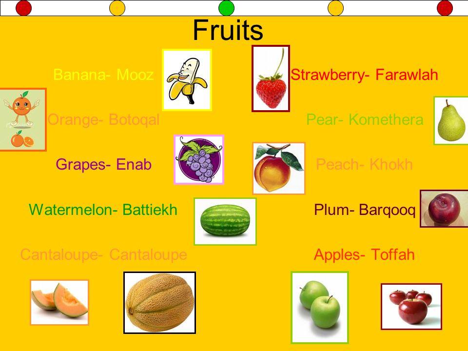 Fruits Banana- Mooz Orange- Botoqal Grapes- Enab Watermelon- Battiekh Cantaloupe- Cantaloupe Strawberry- Farawlah Pear- Komethera Peach- Khokh Plum- B