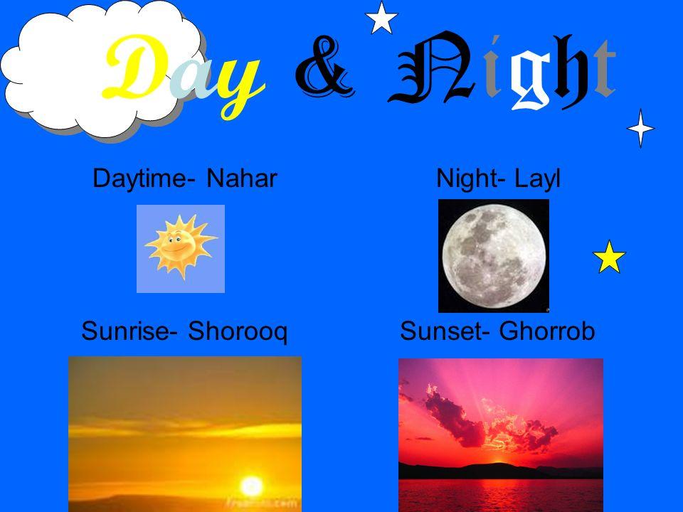 Daytime- Nahar Sunrise- Shorooq Night- Layl Sunset- Ghorrob Day & Night