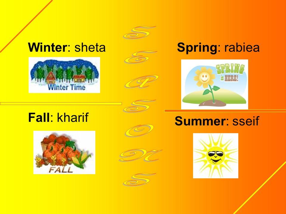Winter: sheta Fall: kharif Summer: sseif Spring: rabiea
