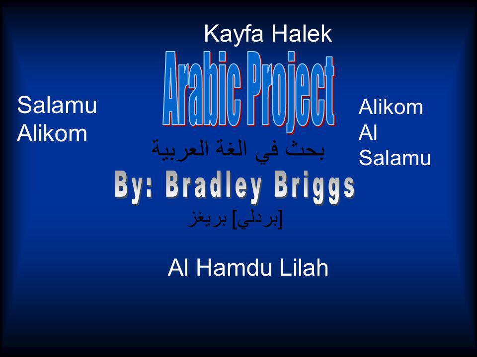 بحث في الغة العربية [بردلي] بريغز Al Hamdu Lilah Salamu Alikom Alikom Al Salamu Kayfa Halek