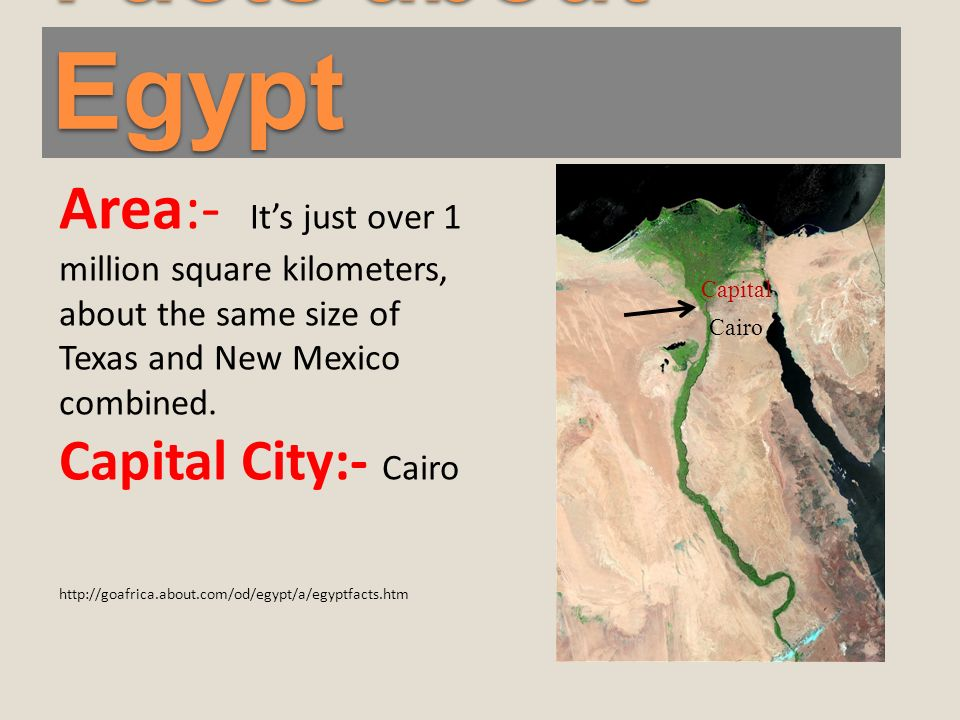 Facts about Egypt Area:- Its just over 1 million square kilometers, about the same size of Texas and New Mexico combined.